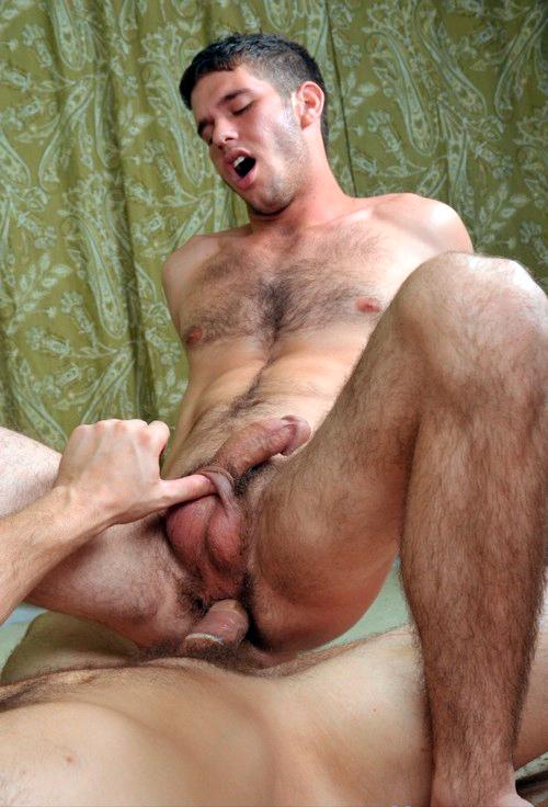 Gay hairy men fucking